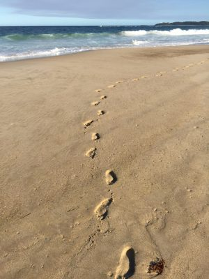 In the case, I looked back and the photo makes my footprints look 3D. Cool!