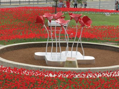 In 2015 For the 100 Years since Gallipoli. 'Poppy Park'