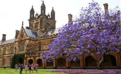 Credit: Sydney University